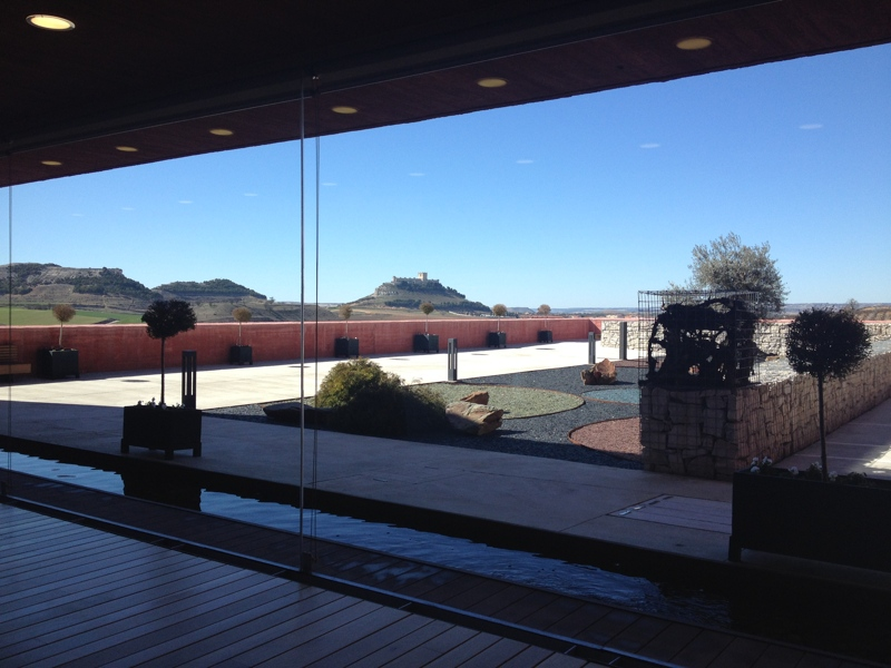 Modern winery Ribera del Duero