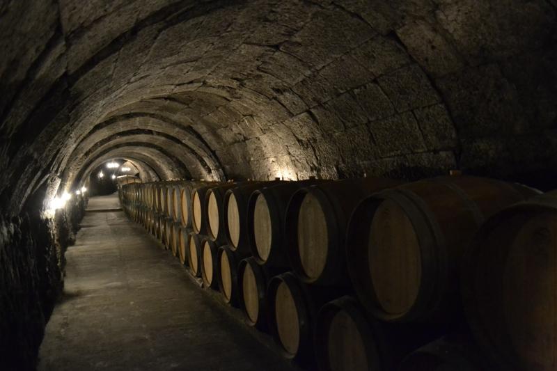 Underground wine cave in Ribera del Duero